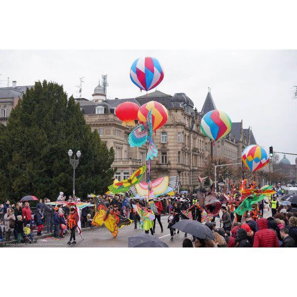 Carnaval de strasbourg 104964 600 600 f