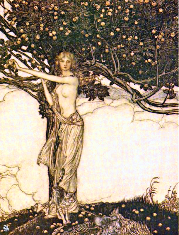 Freya arthur rackham